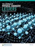 COVER2021_Srivastava_JPCL.jpg