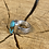Thumbnail: Navajo Artist Alonzo John sterling silver ring w/ top shelf Pilot Mountain