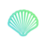 New Shell Logo (no outline).png