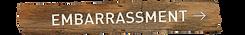 EMBARRASSMENT R.png