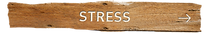 STRESS R.png