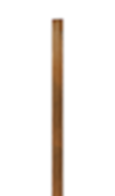 POLE-LONG ISO.png