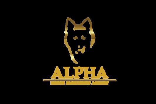 Click-Funnel-Alpha-Brand-5-copy-_2_-min