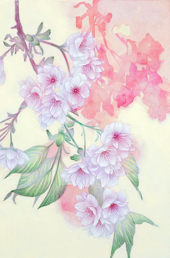 福島薄墨桜