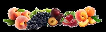 209-2093933_fundos-para-banner-com-fruta