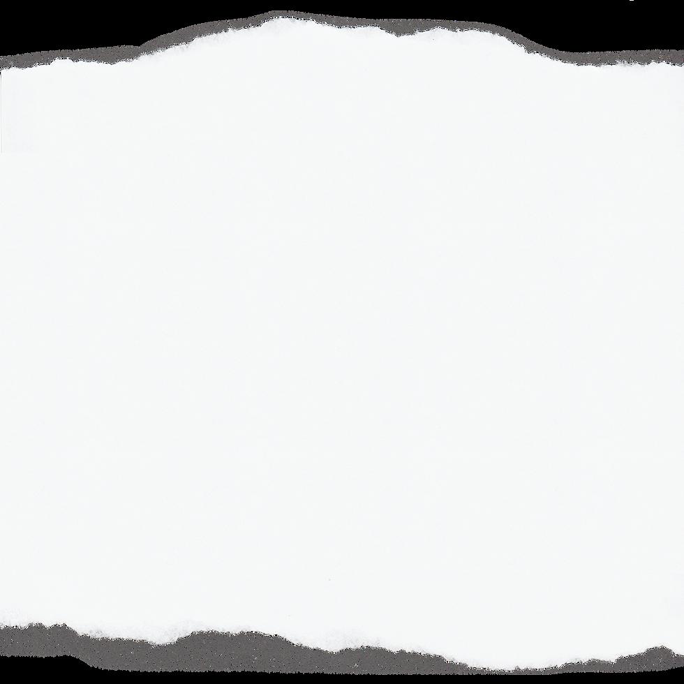 fundo-branco.png
