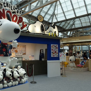 Snoopy Summer Hut House