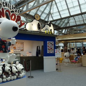 Snoopy Summer Hut House