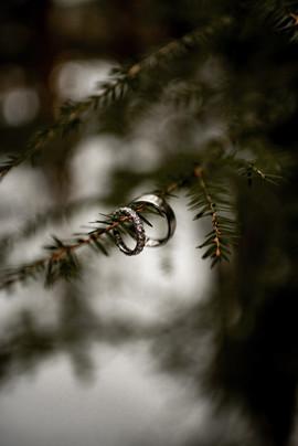 Wedding rings photo in the Adirondacks