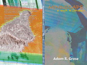 Mindscape: A Year in Cornwall 2011 - 2012