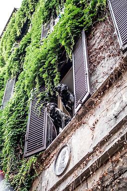 Rome#ניבה יוסף#אדר יוסף#יוסף מונדי#צביה יוסף#Adar Yosef#Niva Josef#Josef Mundi