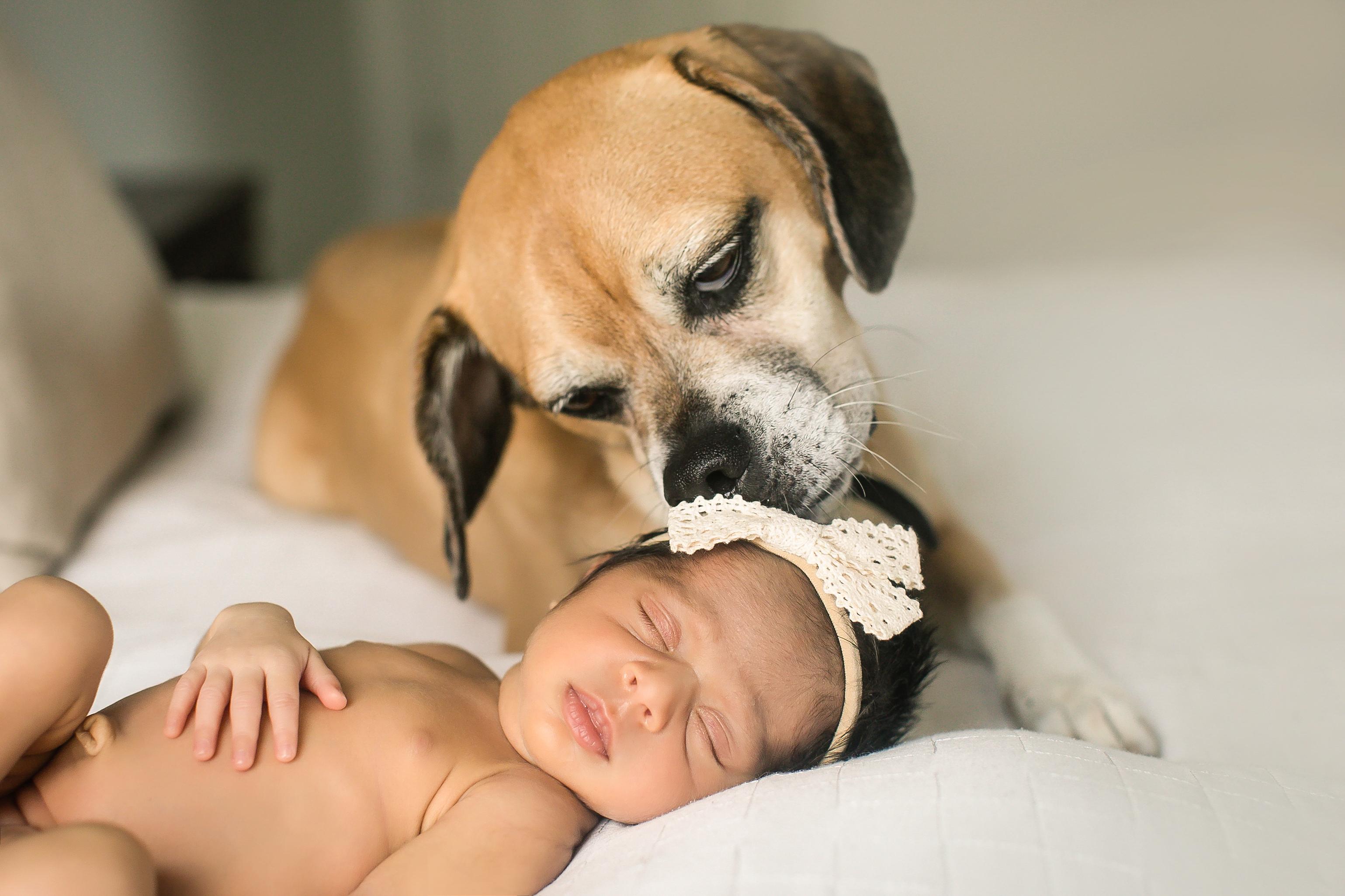 NOVA Newborn & Family Photography 13