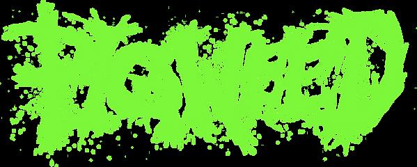 Pigweed Logo Tee.png