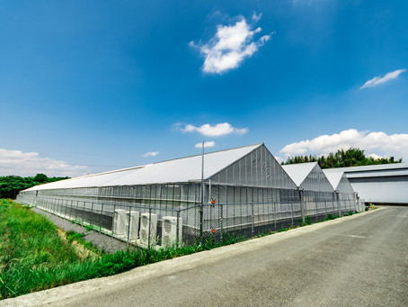 きのくに農業村Blog