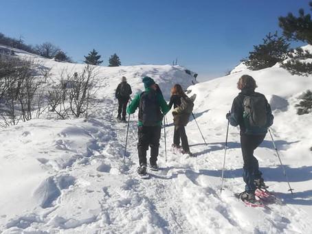 Diario delle escursioni 2021 - Escursione n. 1 Sulle tracce del lupo sulla neve