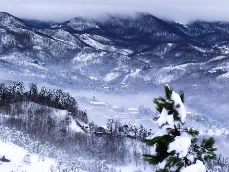 Diario delle escursioni 2020: escursione n. 15 Ciaspolata in Val d'Orba