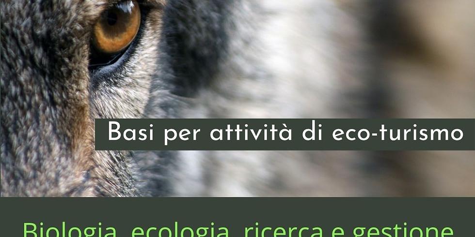 Attenti al lupo - corso di approfondimento sulla specie e turismo sostenibile