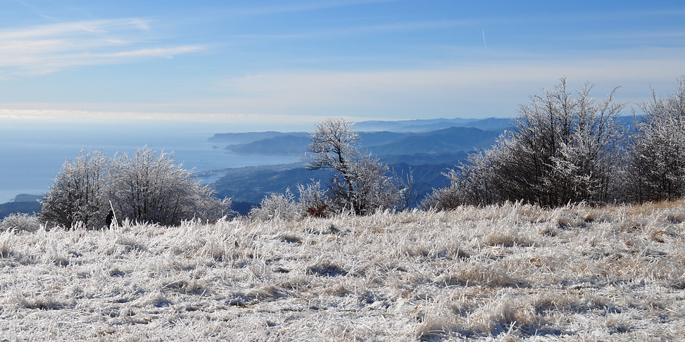 Snow and slow: Alta Via e Monte Beigua
