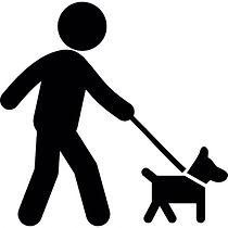 Pet Sitter and Dog Walker