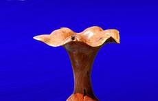 Mesquite Burl Faux Vase