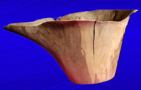 Spalted Ash