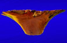 Mesquite With Chesnut Epoxy Inlay