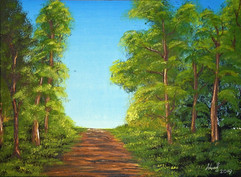 K007 Lesní cesta