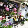 Devine Orchid Florist