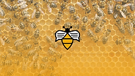 Bee Talks - December