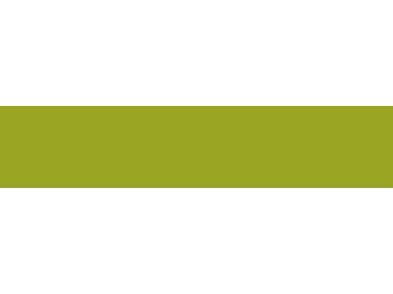 Ayers Animation