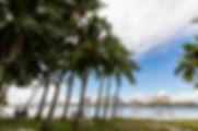 PALM-BEACH_CORCORAN_02.jpg