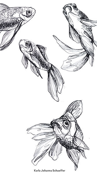 Screensaver Fische logo.jpg