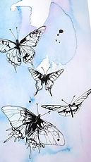 Screensaver Schmetterling bunt.jpg