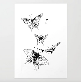 Krafttier Schmetterling Tusche Karla Johanna Schaeffer