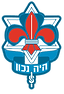 logo israel scouts western europe  1.png