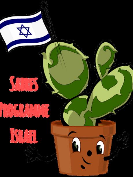 Sabres Summer Programme Israel (reg deposit)