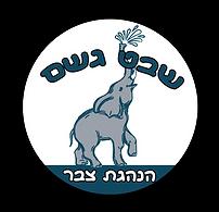 לוגו גשם 2021.png