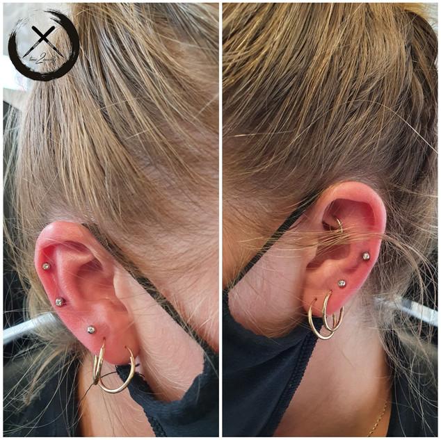 Ear4.jpg