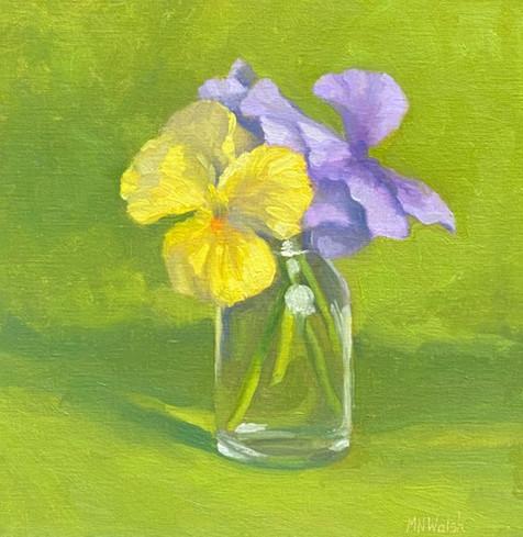 Pansies by Meg Walsh, oil 12x12 $900