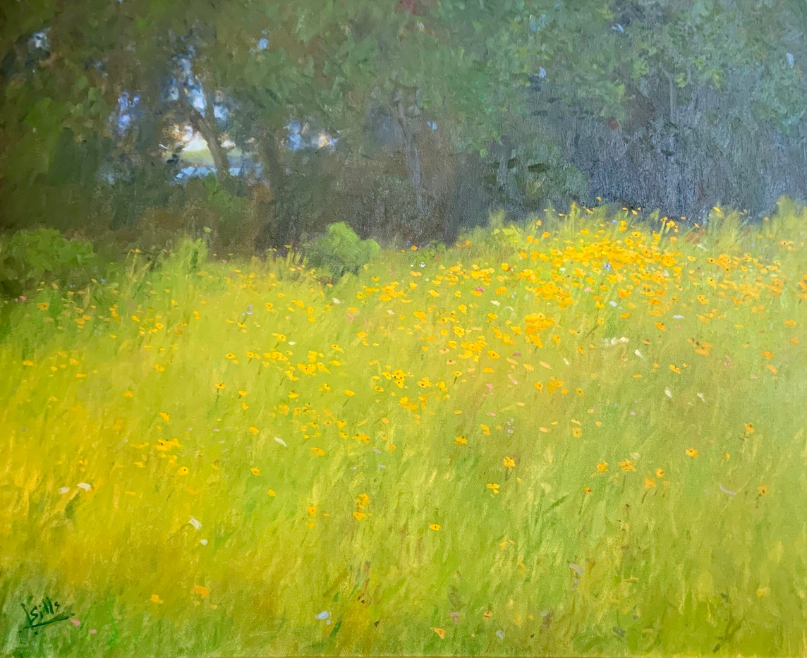 Field of Susies by John Brandon Sills, oil 30x24 $7200