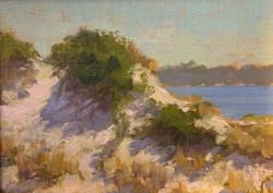 Dune, Morninglight, oil 6x8 $400