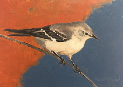 Mockingbird, oil 5x7 $450