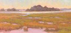 Marsh, oil 8x16 $850