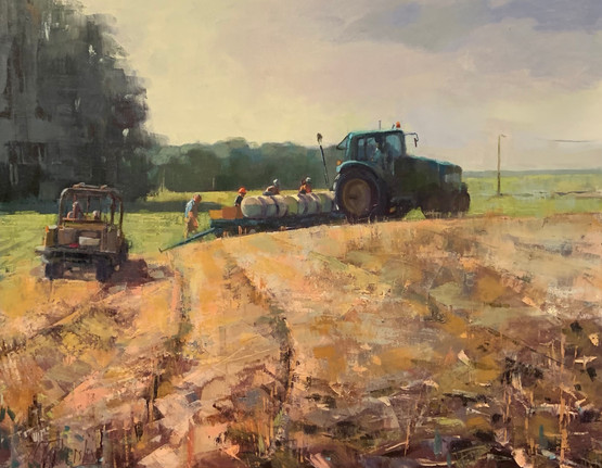 The Planting, oil 30x40 $5200