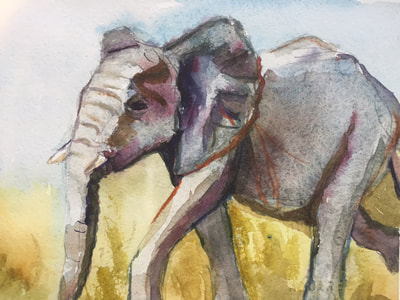 Imire,Baby Elephant_H-Hodges, watercolor 10x8 $200