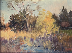 Shade of Fall-Seger $995 9x12
