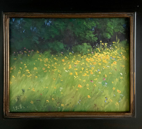 Roadside Wildflowers by John Brandon Sills, oil 8x10 $1250