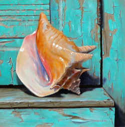 conch shell__large