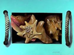 Box of conch shells