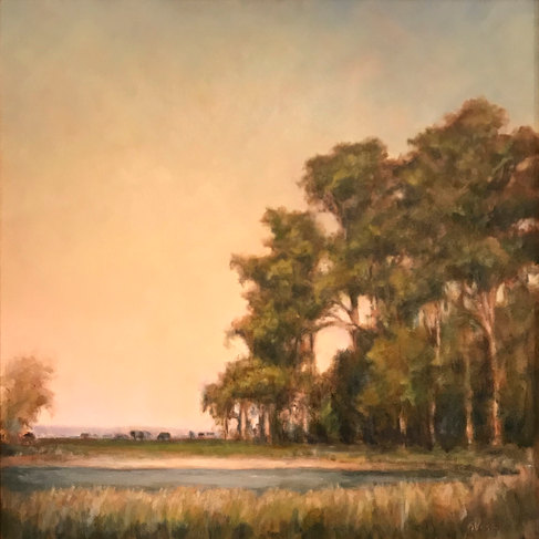 Morning Light on Cow Beach-Veiga 24x24 $1950 SOLD